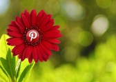 Growing Pinterest Presence
